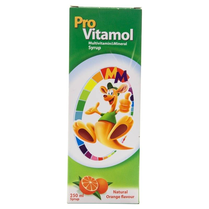 ProVitamol Multivitamin Mineral Şurup 250 ml